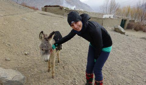 Tabea und der kleine Esel