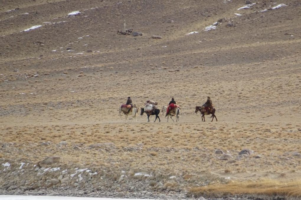 Afgahnische Reiter