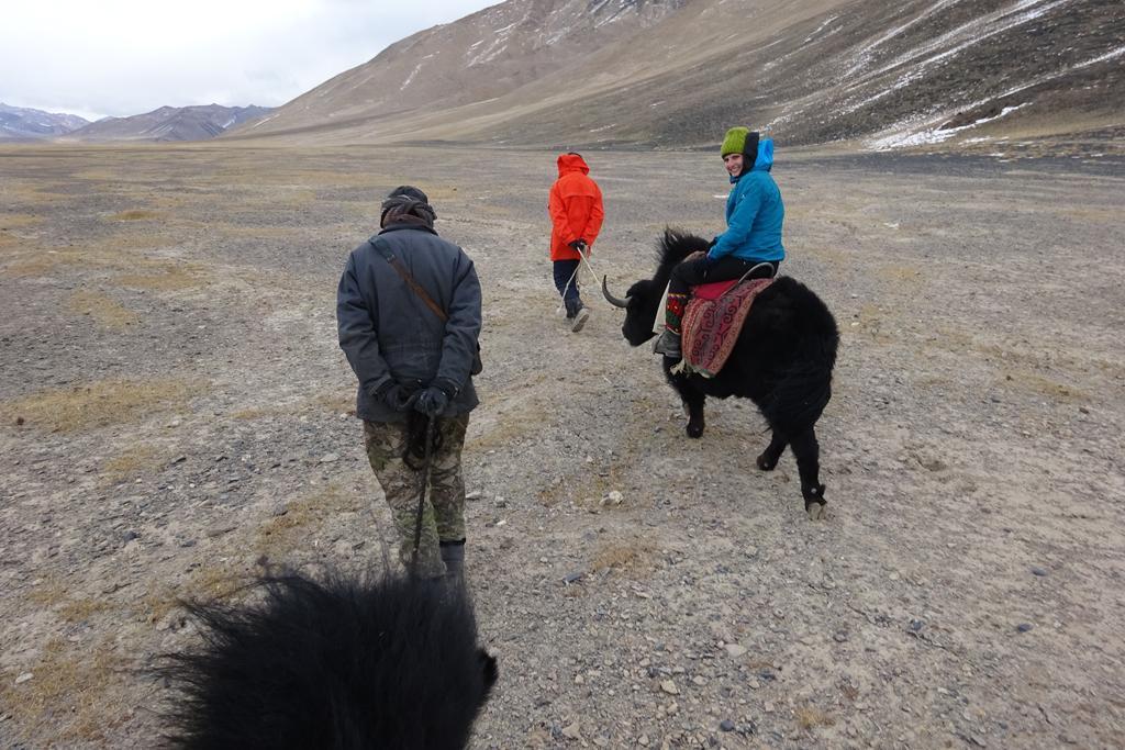 Ausritt auf den Yaks