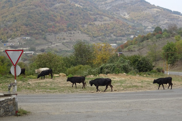 Straße con Tiflis nach Jerewan