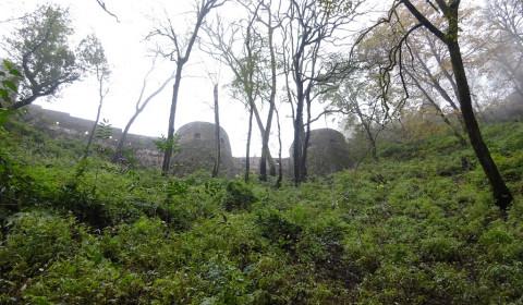 Festung mitten im Wald