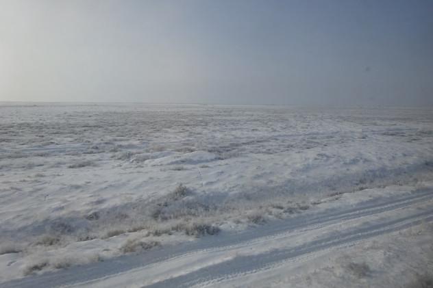 Steppe im Winter