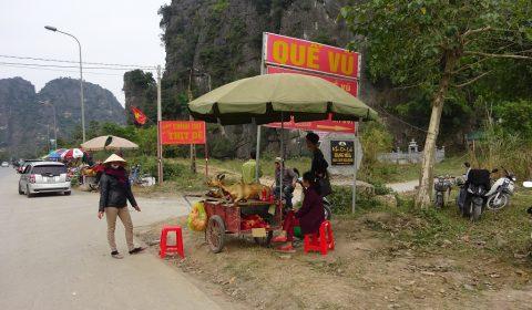 Wildtier am Straßenrand von Trang an
