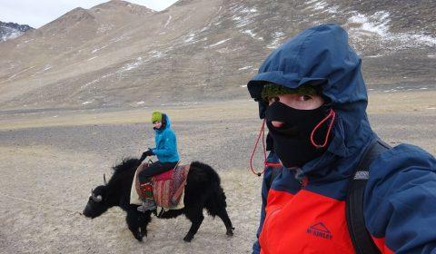 Ritt auf den Yaks im Pamir