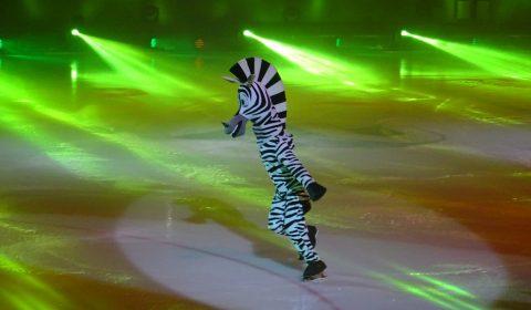 Zebra Marty