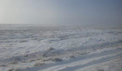 Steppe unter einer Schneedecke in Kasachstan