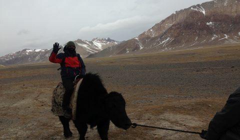 Matthias mit seinem Yak